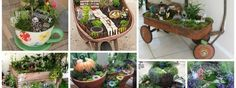 Adorable DIY Mini Gardens That Will Catch Your Eye