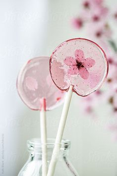 ... homemade cherry blossom lollipops | Ruth Black photography ...