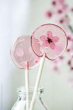 ... homemade cherry blossom lollipops | Ruth Black photography ...