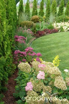 Ogród mały, ale pojemny;) - strona 43 - Forum ogrodnicze - Ogrodowisko.