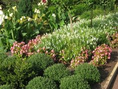 The study of sun patterns in the garden an important part of your garden planning, especially when it comes to full sun landscaping. Learn more about full sun in this article. Full Sun Landscaping, Low Maintenance Landscaping, Landscaping With Rocks, Front Yard Landscaping, Landscaping Ideas, Full Sun Garden, Full Sun Plants, Landscape Design, Garden Design