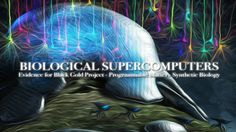 BIOLOGICAL SUPERCOMPUTERS: Black Goo, Programmable Matter & Synthetic Bi...