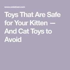 Toys That Are Safe for Your Kitten — And Cat Toys to Avoid
