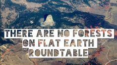 There Are No Forests On FLAT EARTH - Roundtable
