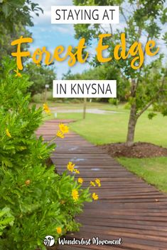 Staying At Forest Edge – Nature Lover's Retreat In Knysna | Wanderlust Movement | With a tranquil location right next to the Knysna forest, Nature Lover's Retreat is the perfect place to disconnect. Here's my experience staying at Forest Edge - Nature Lover's Retreat in Knysna, South Africa.