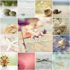 By The Sea Shore Collage