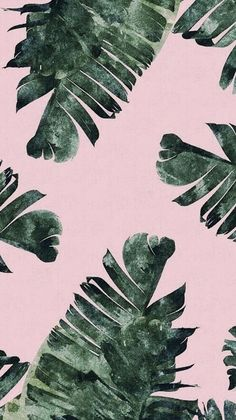 Imagen de wallpaper, background, and green Plant Wallpaper, Tropical Wallpaper, Summer Wallpaper, Iphone Background Wallpaper, Pastel Wallpaper, Aesthetic Iphone Wallpaper, Screen Wallpaper, Aesthetic Wallpapers, Ipod Wallpaper