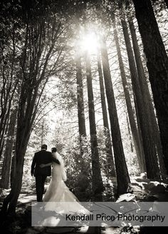 Wedding Photography | Lake Tahoe Tree Company