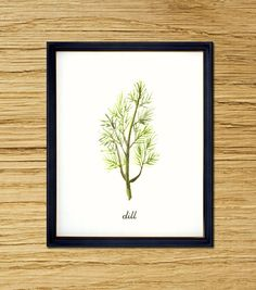 Dill watercolor painting, Botanical painting, Wall Decor, Herb garden, Kitchen art, Botanical illustration, Green, 8x10, Buy 2 Get 1 Free