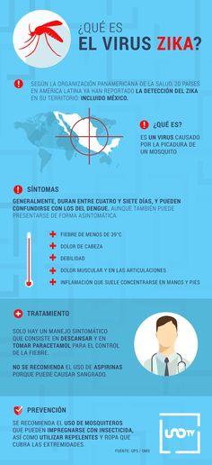 Qué es el virus Zika #infografía