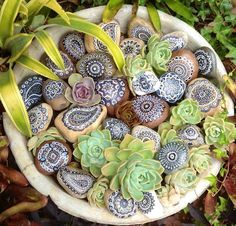 Pebble mandalas, made by Linda Troskie..,from Iryna