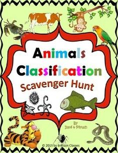 Animals Classification Scavenger Hunt  This scavenger hunt introduces to students an information and basics science about the whole animal kingdom.This activity is designed based on my animal classification unit which you can get from this store.  There are 32 scavenger hunt cards with colorful pictures. It's a great tool for to review vocabulary as well as science on animal classification.