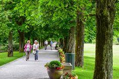 Allee in Volcji Potok, Slowenien  ... #ifeelslovenia #twoslo #volcjipotok #slowenien #park