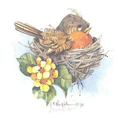 This x lithograph is based on a watercolor by Carolyn Shores Wright and is one of many birds she has painted over the years. The print is signed by the artist. Bird Drawings, Animal Drawings, Watercolor Bird, Watercolor Paintings, Bird Paintings, Art Impressions Stamps, Funny Birds, China Painting, Arte Floral