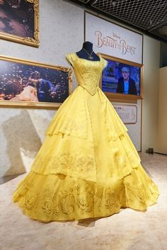 Disney Princess Costumes, Disney Princess Dresses, Disney Dresses, 15 Dresses, Ball Dresses, Pretty Dresses, Ball Gowns, Fashion Dresses, Beautiful Gowns