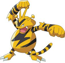 Image result for electabuzz
