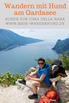 Promenade avec un chien sur le lac de Garde: Cima della Nara - Camping Welt Nara, Yorkie, Camping Holiday, Dog Travel, Van Life, Grand Canyon, Dog Cat, Wanderlust, Vacation