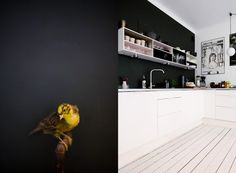 a black wall and a bird on a pipe plus an over the top beautiful kitchen