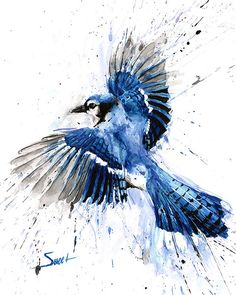 Original watercolor blue jay bird painting Flying by SignedSweet, $299.99