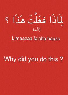 (Fabienne) Arabic MSA
