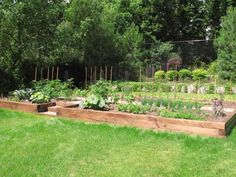 Gardens 'approved' by David Suzuki foundation.  Each gardener is actively promoting green practices in their community.