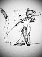 FAuchereve cat thing ye