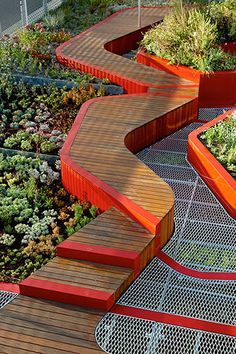 The Burnley Living Roofs at the University of Melbourne's Burnley Campus. Feature walkway - Love the red highlights too.