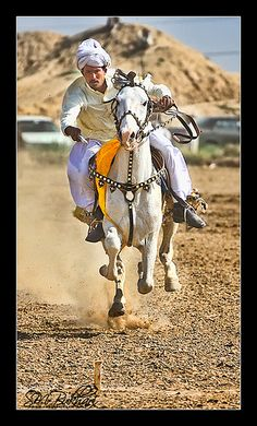 Tent Pegging , Islamabad. Arabian Knights, Self Pictures, Polo Horse, Indus Valley Civilization, Tent Pegs, African Royalty, Ancient Art, Equestrian, Riding Helmets