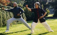 "Practising the ancient martial art of Tai Chi is so beneficial to elderly   people's health that it should be ""the preferred mode of training"",   according to scientists."