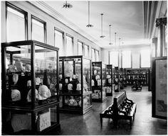 The Metropolitan Museum of Art: The Cesnola Collection.Photographed ca. 1907.Image © The Metropolitan Museum of Art