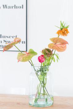 Flower Friday - flowers in glass Table Flowers, Flower Vases, Beautiful Flowers, Tropical Flowers, Fresh Flowers, Bonsai Plante, Home Flower Arrangements, Blooming Plants, Diy Blog
