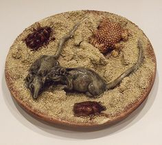 An extremely rare and highly unusual Portuguese Palissy sand effect plate with mice, toad and beetles. c1880  Dimensions in Inches: Dia: 8.25 ins