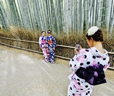 Kyoto, bambo forest