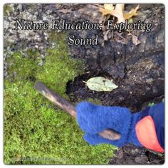 Nature Education: Exploring Sound (Part 1 of the 5 Senses) A wonderful way to introduce sound while exploring outside! How Wee Learn 5 Senses Activities, Nature Activities, Kids Learning Activities, Educational Activities, Montessori Activities, Outdoor Activities, Outdoor Learning, Outdoor Play, Preschool Science