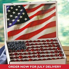 4th of july sale grill