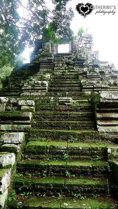 Cambodia - Temples in the Jungle