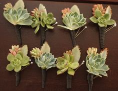 Love these succulent boutonnieres!
