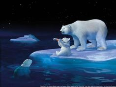 Polar Bears and Coke bottle