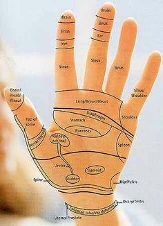 Reflexology Charts: Hand, Foot & Ear Reflexology Chart Tips! Reflexology Points, Reflexology Massage, Acupressure Points, Lymph Massage, Acupuncture Points, Reiki, Health And Beauty, Health And Wellness, Health Tips