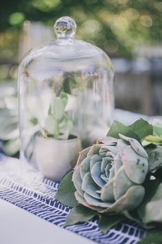 Bell jar covered succulents. Month-Of Wedding Planner: Katie Rebecca Events / Florist: Unveiled Grace Events.  – photo by http://www.edytaszyszlo.com/