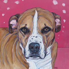 "Oliver the Boxer Lab Mixed Breed Dog Custom Pet Portrait Painting in Acrylic on 12"" x 12"" Canvas from Pet Portraits by Bethany."