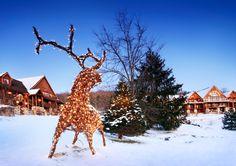 Big Cedar Christmas