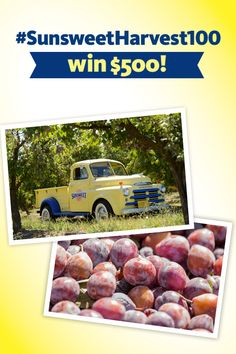 August is the time for gathering—do you have a harvest success story? Share your favorite summertime recipe, or something you've made or grown for a chance to win $500.   Official Rules: https://fb.sunsweet.com/healthyhub/public/rules.php #SunsweetHarvest100