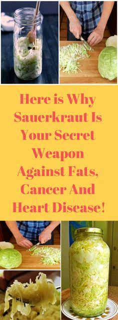 Here is Why Sauerkraut Is Your Secret Weapon Against Fats, Cancer And Heart Disease! – Healthy Magazine