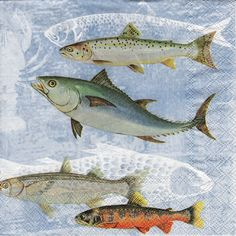 Decoupage Paper Napkins Sea Life Fishes Nautical (1x Napkin) - ideal for Decoupage, Collage, Mixed Media, Crafts