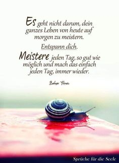 (notitle) - Sabrina C- Hobbies For Couples, Hobbies For Kids, Motivational Quotes For Life, Life Quotes, Inspirational Quotes, Baby Quotes, German Words, Positive Inspiration, Love Your Life