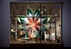 Anthropologie Window Display | Flickr - Photo Sharing!