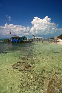 Daily Image from Picture Belize - Ambergris Caye Belize Message Board