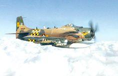 A South Vietnamese Air Force Douglas A-1 Skyraider.