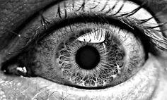 Eye & Iris...